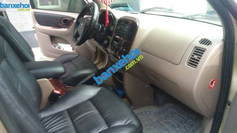 Xe Ford Escape 3.0 4X4 XLT 2004-7