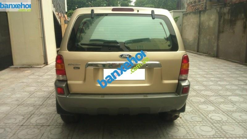Xe Ford Escape 3.0 4X4 XLT 2004-4