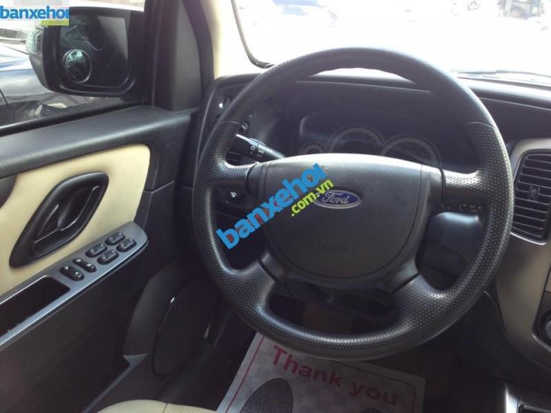 Xe Ford Escape XLS 2013-8