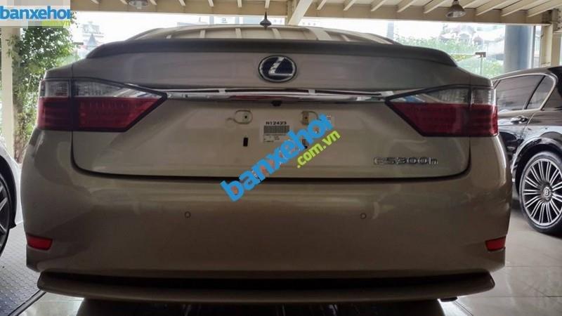 Xe Lexus ES 300H 2014-1