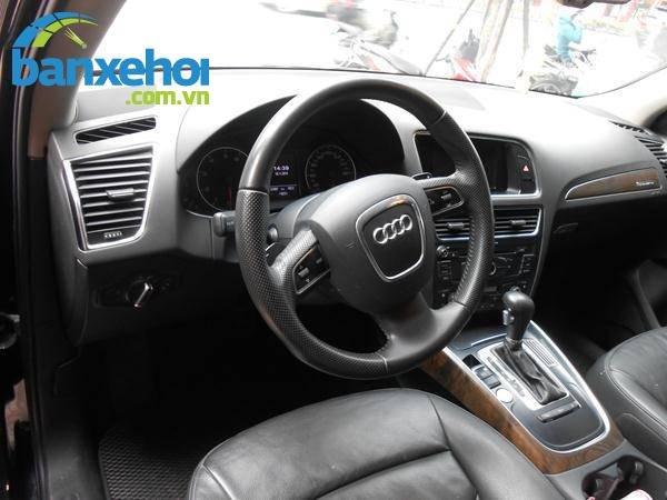 Xe Audi Q5  2010-6