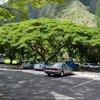 7 bí kíp chống nóng cho xe ô tô trong mùa hè nắng gắt