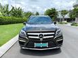 Bán Mercedes Benz GL500 AMG 1 đời chủ giá siêu rẻ, chỉ 2.550 tỷ1