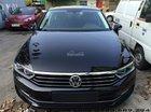 Passat E Volkswagen màu nâu, đen - Xe nhập - Giá tốt LH Quang Long 0933689294