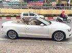 Bán Audi A4 đời 2008, màu trắng chính chủ