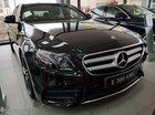 Cần bán Mercedes E300 sản xuất 2018, màu đen