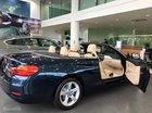 Cần bán BMW 4 Series năm sản xuất 2017, màu xanh lam, xe nhập