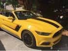 Bán Ford Mustang sản xuất năm 2016, màu vàng