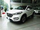 Chỉ 245tr - Hyundai Vũng Tàu bán Hyundai Tucson 2.0l xăng đặc biệt 2018, giá cực tốt, trả góp 85% - 0933598285