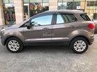 Cần bán Ford EcoSport 2017 AT bản Titatium, màu xám