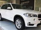 Bán ô tô BMW X5 xDrive35i nhập khẩu Đức, đời 2017 - 01653802800