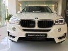 Bán BMW X5 xDrive35i nhập khẩu Đức 100%, xe mới 100%