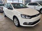 Bán Volkswagen Polo hatchback sản xuất năm 2017, nhập khẩu nguyên chiếc, giá chỉ 695 triệu