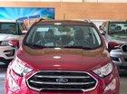 Bán Ford EcoSport Titanium 2019, gói phụ kiện hấp dẫn