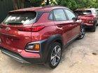 Bán Hyundai Kona ra mắt thị trường Việt Nam