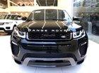 Cần bán xe LandRover Range Rover Evoque năm sản xuất 2018 - Sale 0938302233