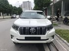 Bán xe Toyota Land Cruiser đời 2018, màu trắng, nhập khẩu