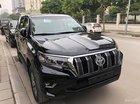 Bán Toyota Land Cruiser Prado VX đời 2018, màu đen, xe nhập