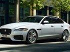Hotline 093 22222 53 bán Jaguar XF Jaguar XF Prestige 2019 màu trắng, bảo hành chính hãng
