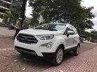 Cần bán xe Ford EcoSport 1.5l Titanium đời 2019,màu trắng giá sock T12, hỗ trợ giao toàn quốc