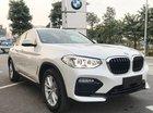 Cần bán BMW X4 đời 2018, màu trắng, nhập khẩu 100%, giá tốt, ưu đãi nhiều