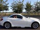 Cần bán gấp Mercedes SLK 280 đời 2007, màu trắng, nhập khẩu nguyên chiếc xe gia đình