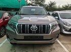 Bán Toyota Land Cruiser Prado VX 2018, động cơ 2.7L, xe nhập khẩu