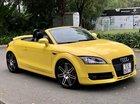 Bán Audi TT AT năm 2007, màu vàng, Đk 2009, xe đẹp