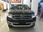 Bán Ford Everest Titanium 4x2 2019, lh 0934799119
