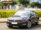 Bán Volkswagen Passat Bluemotion Nâu 2018 - Nhập khẩu chính hãng từ Đức, hỗ trợ trả góp 80%/ Hotline: 090.898.8862