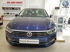 Bán Volkswagen Passat Bluemotion xanh - Xe nhập khẩu giao ngay, giá tốt chính hãng Volkswagen/ Hotline: 090.898.8862