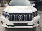 Cần bán xe Toyota Prado 2018, màu trắng, nhập khẩu