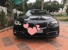 Bán BMW 5 Series 520i sản xuất 2014, màu đen