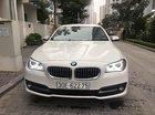 Cần bán BMW 5 Series 520i đời 2016, màu trắng, nhập khẩu nguyên chiếc