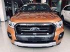 Cần bán Ford Ranger Wildtrak năm 2019, nhập khẩu nguyên chiếc