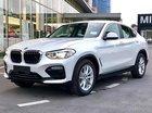 Cần bán BMW X4 xDrive20i năm 2019, màu trắng, nhập khẩu, xe hoàn toàn mới