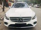 Bán Mercedes GLC300 sản xuất 2016, màu trắng