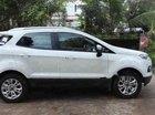 Cần bán lại xe Ford EcoSport AT 2017, màu trắng xe gia đình