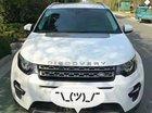 Bán ô tô LandRover Discovery đời 2017, màu trắng, nhập khẩu nguyên chiếc