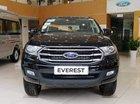Sở hữu ngay Ford Everest, trả trước chỉ 250 triệu đồng