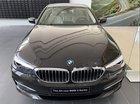 Cần bán xe BMW 520i 2019, màu đen, xe nhập