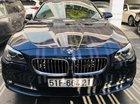 Cần bán xe BMW 520 Series đăng ký lần đầu 2016, màu xanh lam nhập từ Nhật