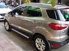 Cần bán Ford EcoSport Titanium đời 2018, nhập khẩu