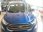 Bán ô tô Ford EcoSport 1.5 Titanium năm 2019, màu xanh lam