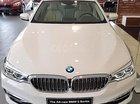Bán BMW 5 Series 530i Luxury Line 2018, màu trắng, nhập khẩu, mới 100%