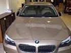Ban xe BMW 520i, Sx 2012, sử dụng gia đình còn rất mới