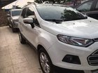 Bán gấp Ford EcoSport đời 2014, màu trắng số sàn, giá chỉ 440 triệu