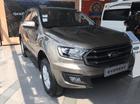 Bán Ford Everest năm 2018 màu vàng, 1 tỷ 035 triệu nhập khẩu