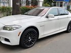 Bán BMW 5 Series 528i đời 2010, màu trắng, nhập khẩu nguyên chiếc, 980tr