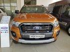Bán Ford Ranger 2019, đã có sẵn tại Showroom, cho vay 90-100% giao xe ngay nhận quà hấp dẫn